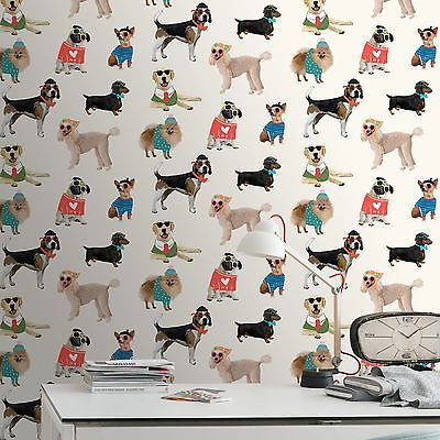 Dogs In Sunglasses Wallpaper Rasch 273502 New Puppy Room Decor Puppy Room Decor Boys Bedroom Wallpaper Puppy Room