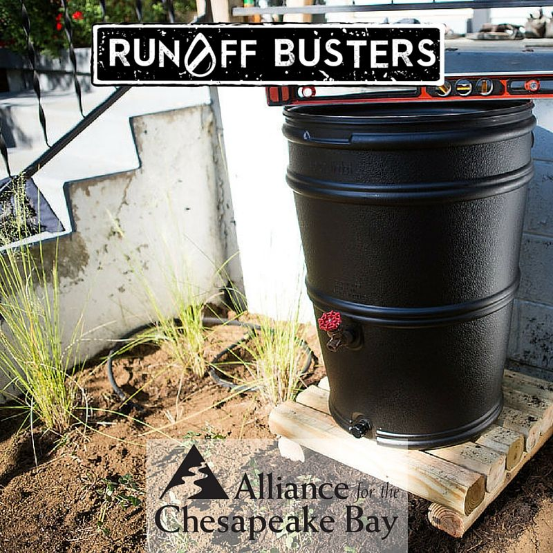 Monthly. That's how often you should be inspecting your rainbarrel.