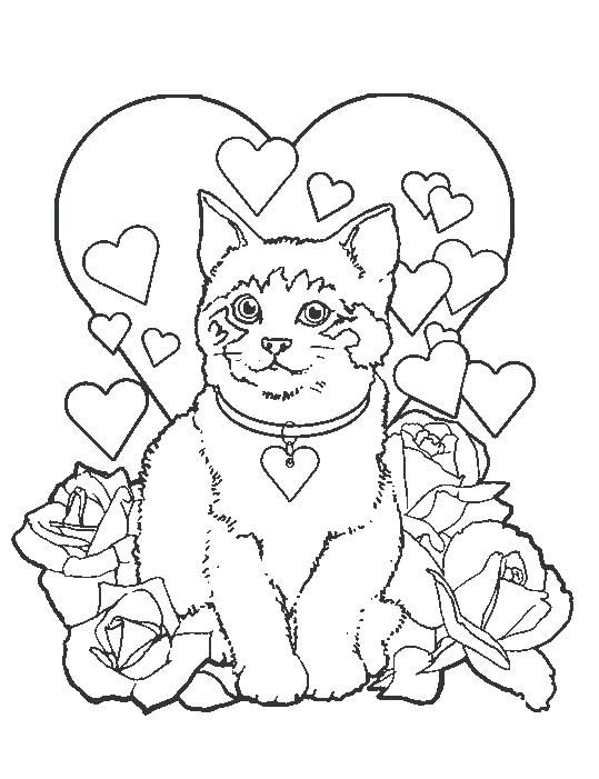 Image Result For Coloriage Fille 10 Ans Chaton Coloriages Pour