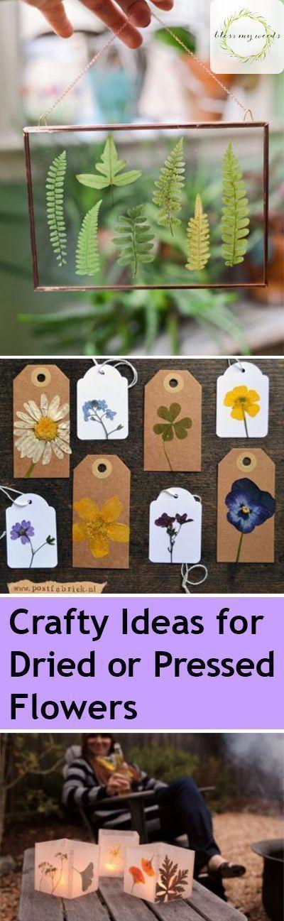 Schlau Ideen für getrocknete oder gepresste Blumen  #schlau #getrocknete #Blume…