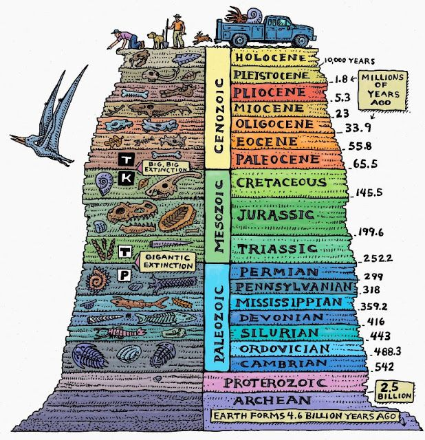 10 Interesting Facts about The geological time scale | Geology IN ...