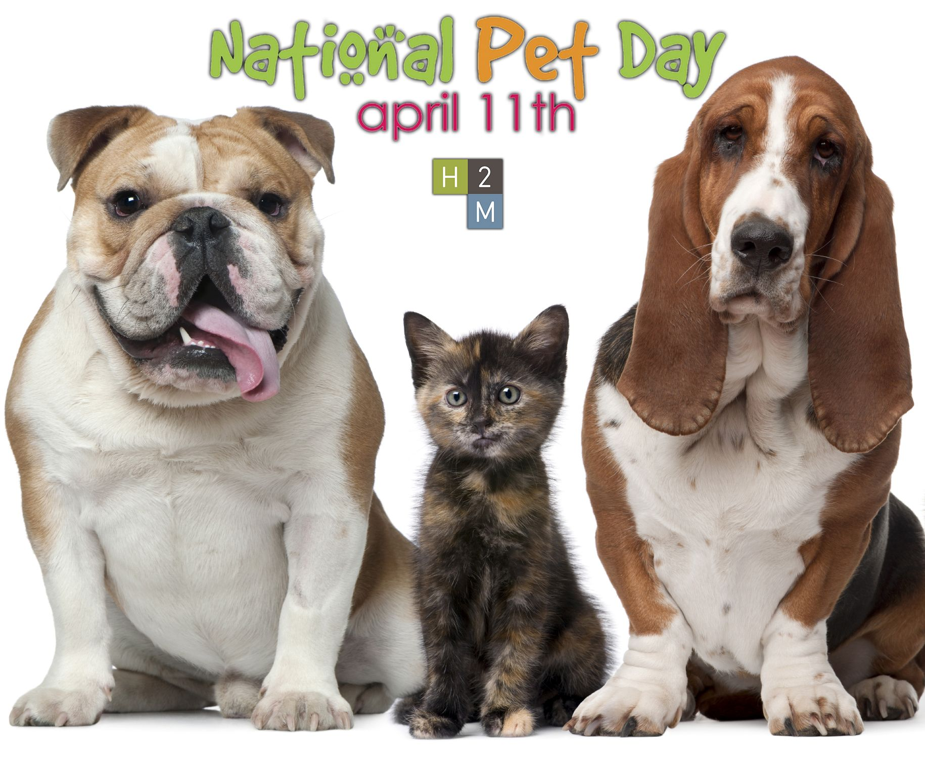 Happy National Pet Day! Even though loving our pets is