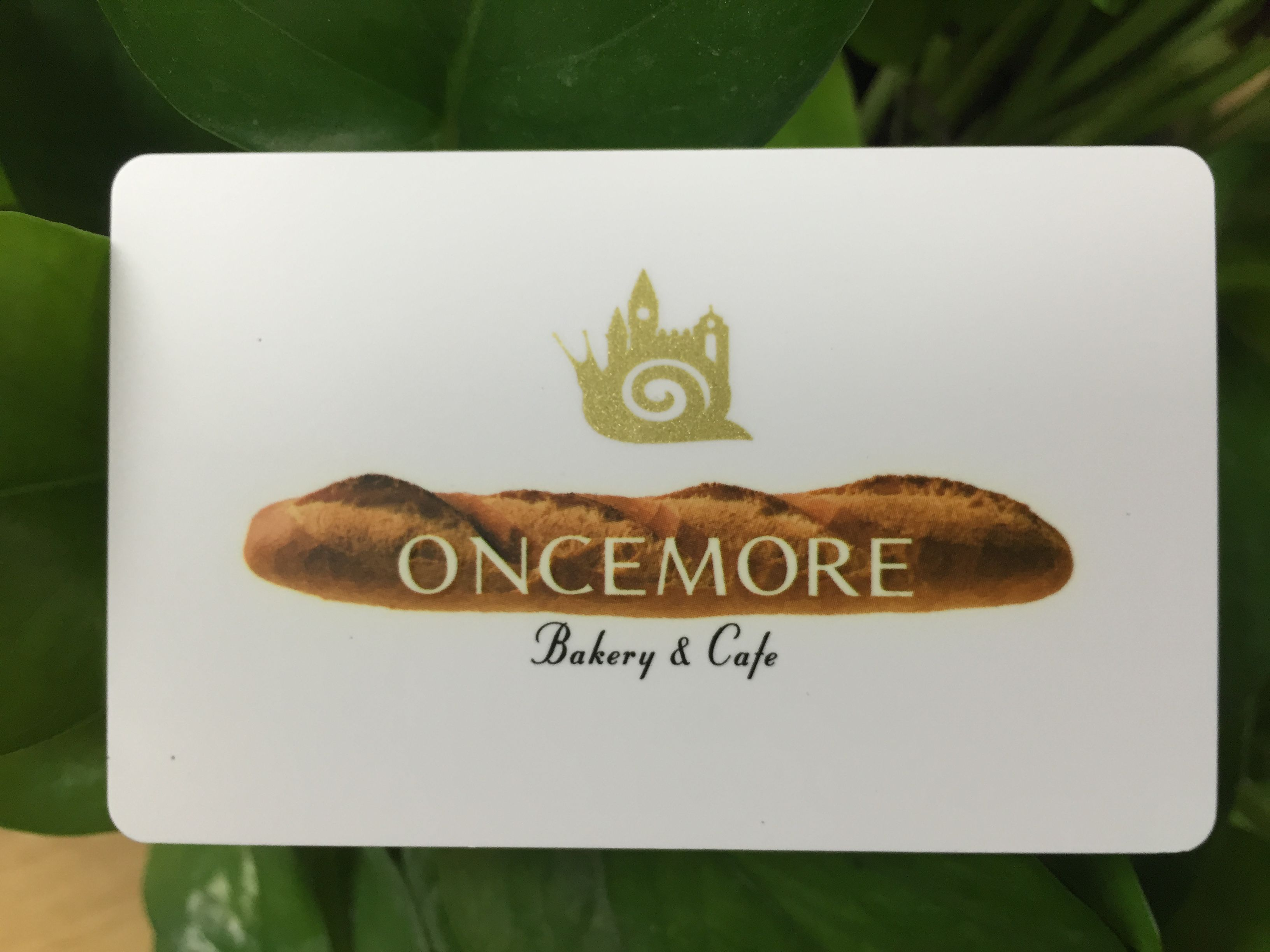 Gift card with offset printing for discount card cards