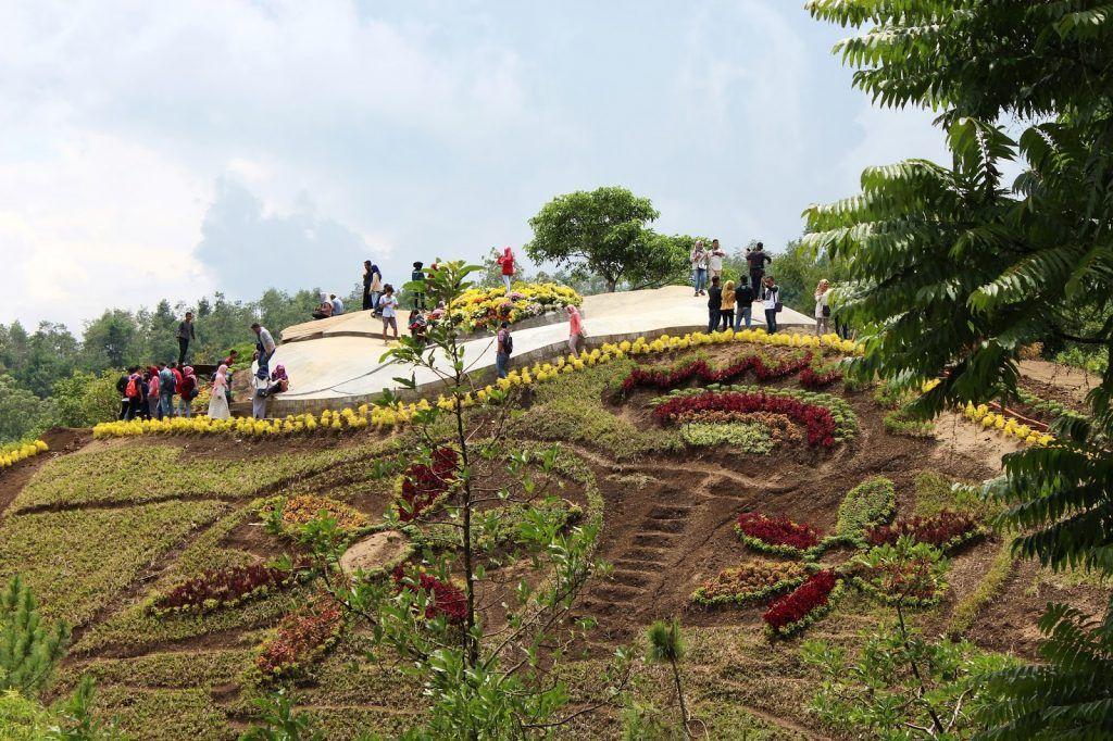 Harga Tiket Masuk Dan Alamat Bukit Bulu Flower Garden