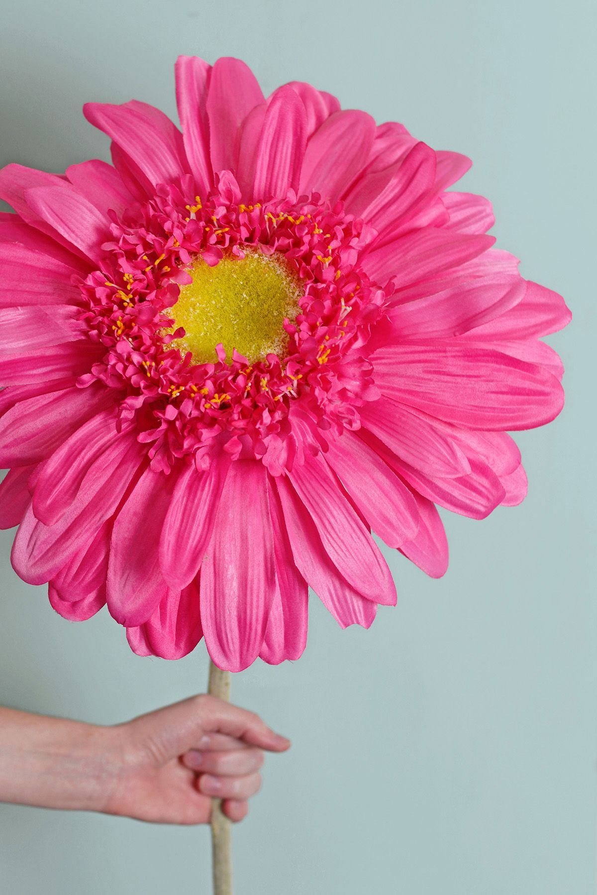 34 silk jumbo ruffle gerbera daisy flower spray cerise pink 34 silk jumbo ruffle gerbera daisy flower spray cerise pink dhlflorist Gallery