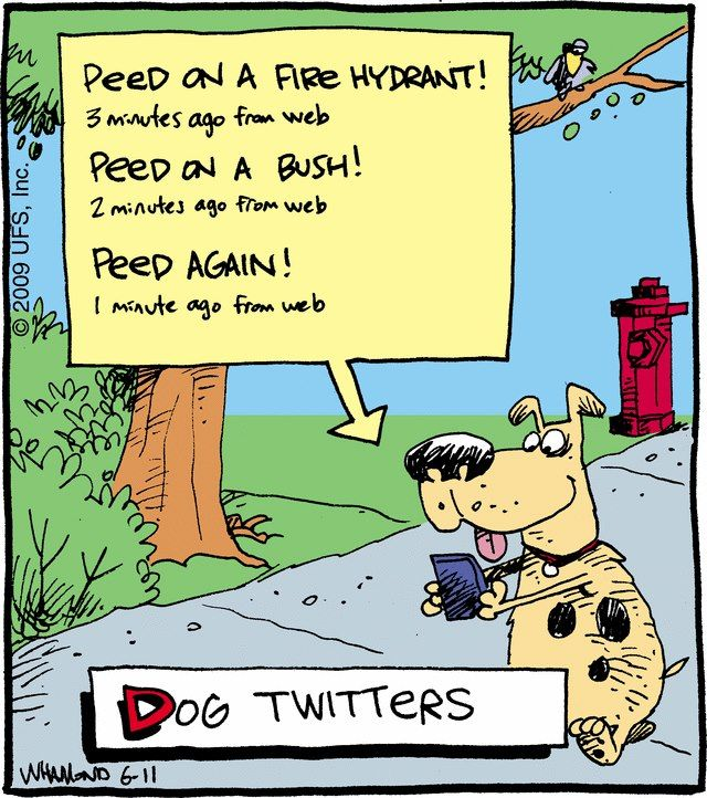 Funny Cartoon Dog Twitters Funny Cartoons New Funny Jokes