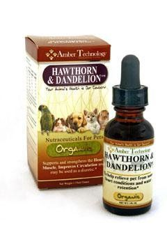 Amber Technology Hawthorn and Dandelion 1 oz *** Check out the image by visiting the link.