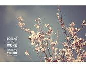 Love  this quote, cherry blossoms finish it off. 8x12  print - dreams don't work unless you do: Roald Dahl. $20.00, via Etsy.