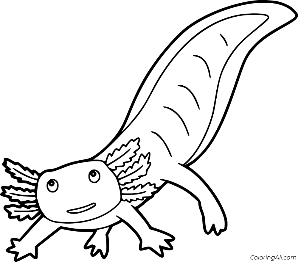 9 Free Printable Axolotl Coloring Pages In Vector Format Easy To Print From Any Device And Automatically Fit Any Coloring Pages Animal Coloring Pages Axolotl
