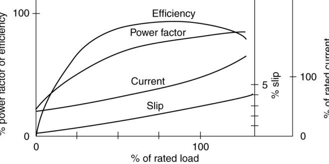 Three Phase Induction Motor Performance