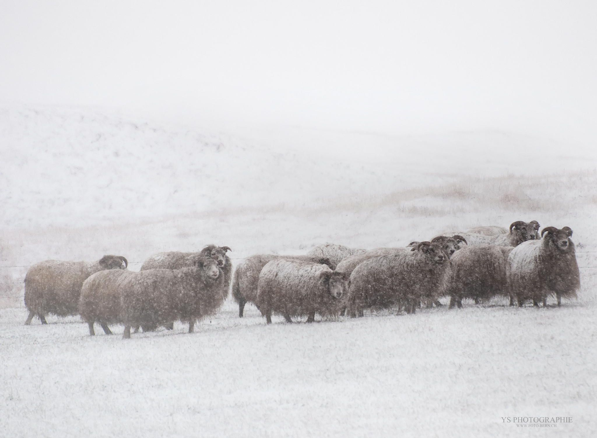 Iceland. KALTER WINTER by Yves Schüpbach on 500px