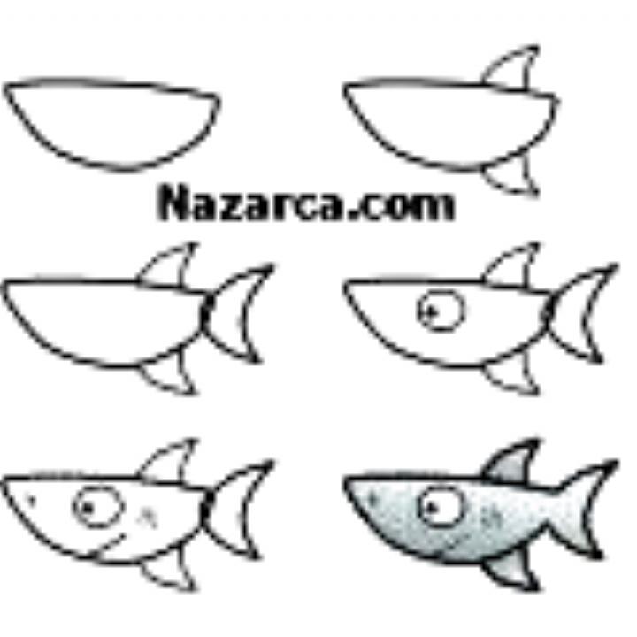 Kolay Kopek Baligi Cizmek In 2020 Drawing For Kids Mermaid Drawings Animal Drawings