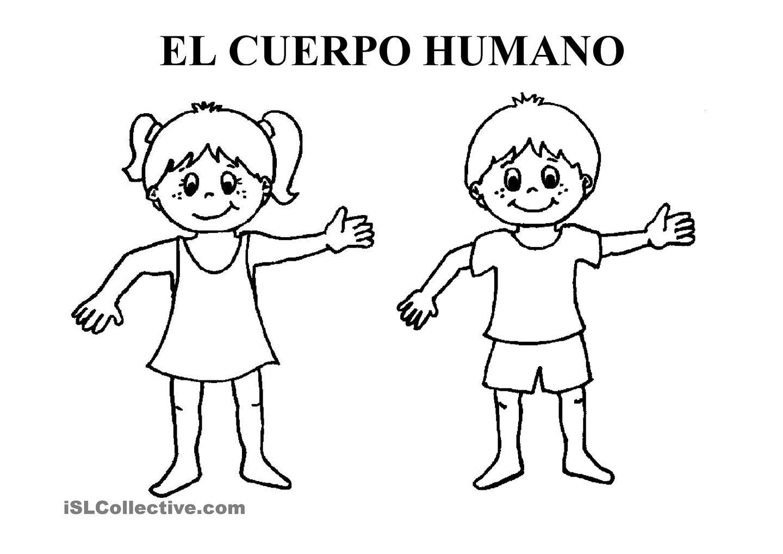 Resultado De Imagen Para Dibujos Del Cuerpo Humano Y Sus Partes Para Colorear El Cuerpo Humano Infantil Cuerpo Humano Dibujo Partes Del Cuerpo Humano