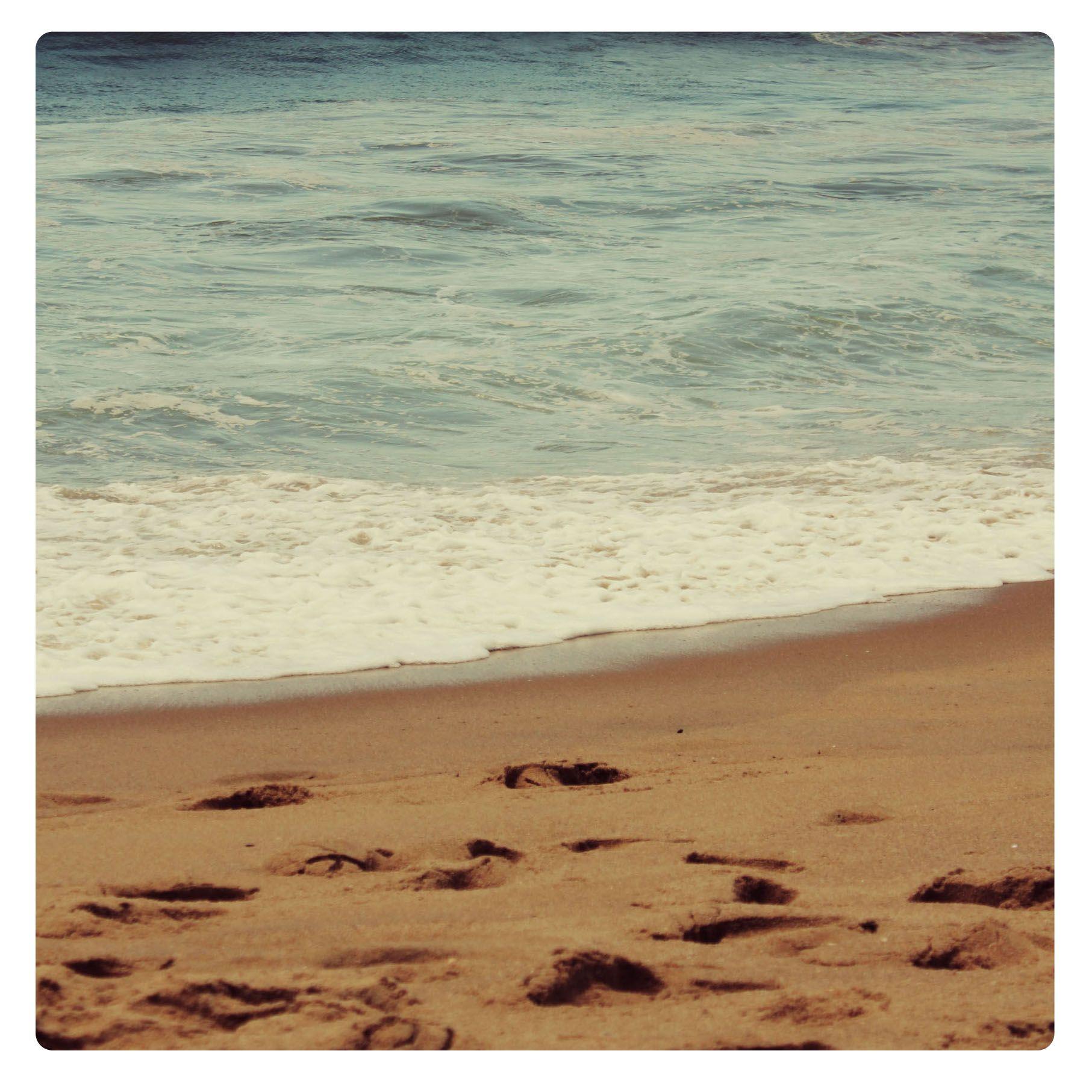 Meia Praia - SC