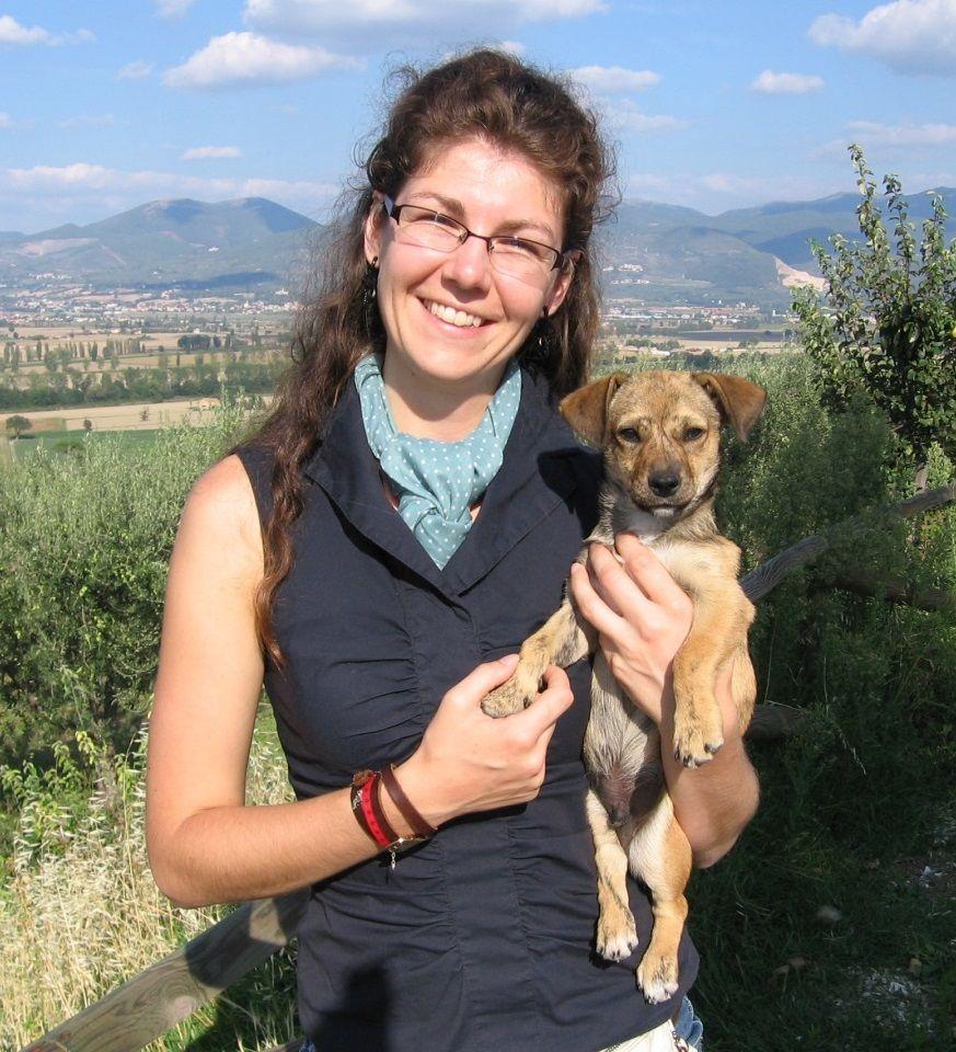 Careers as a registered veterinary technician veterinary