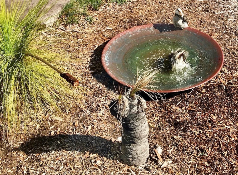 Extra Large Spun Copper Dish In 2020 Copper Dishes Bird Bath Extra Large