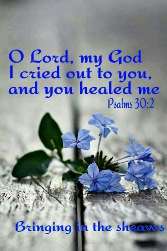 Psalms 30:2 | *Jesus My Precious Savior* | Healing