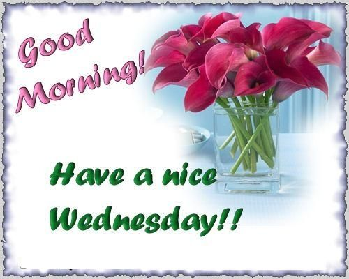 Good Morning Wednesday Images And Quotes : Good morning have a nice wednesday