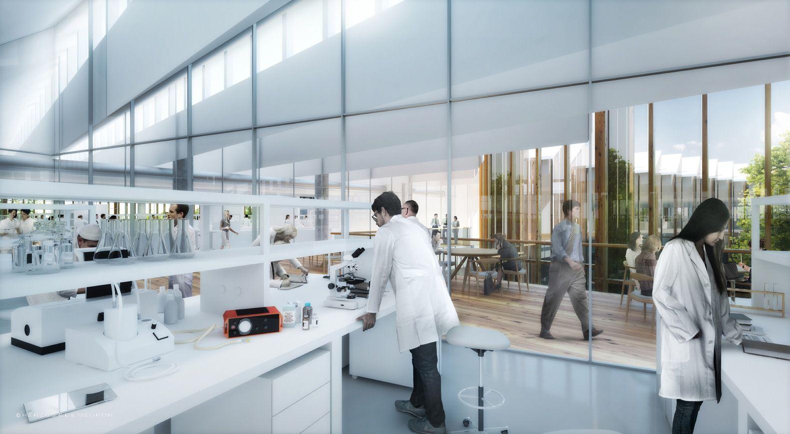 Gallery Of Herzog De Meuron S Astrazeneca R D Headquarters Tops Out In Cambridge 7 Laboratory Design Research Centre Design