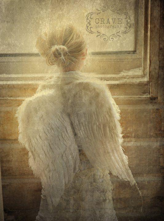 Little Angel ~ Vintage Rose Collection