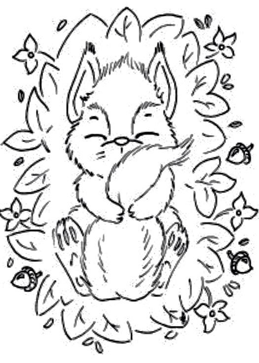 Cute Snoozing Baby Squirrel Coloring Pages Basic