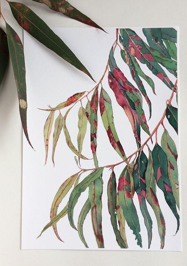 Gum Tree Print A5 10x8 A4 14x11 A3 Botanical Watercolour Etsy Botanical Painting Plant Sketches Botanical Watercolor