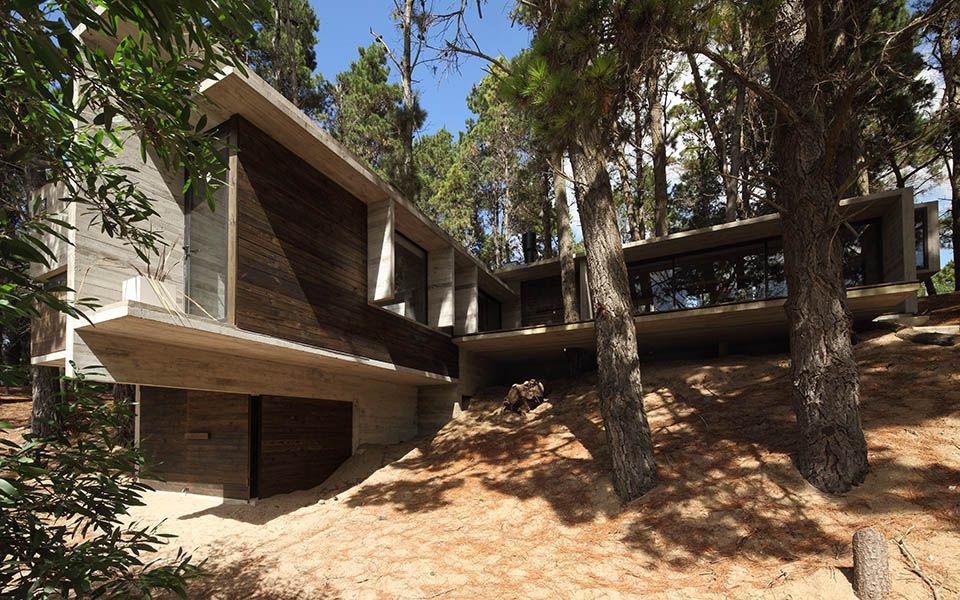 Casa Bb Bos Huis Architectuur Architecten