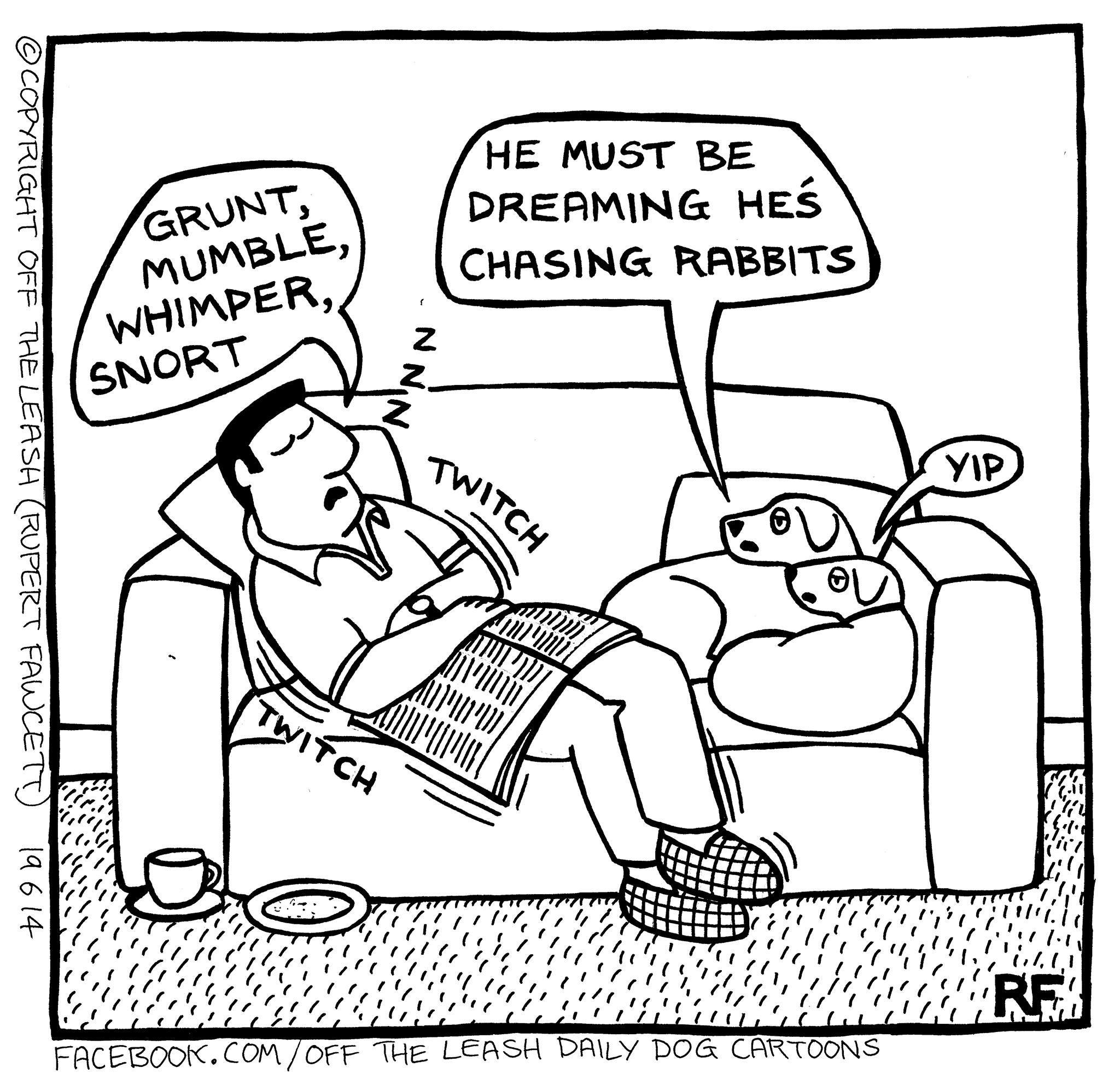 sofa king joke interior design white leather off the leash dog cartoons pinterest doggies