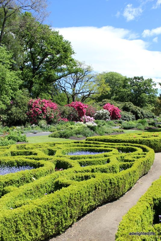 Dunedin Botanical gardens. New Zealand.