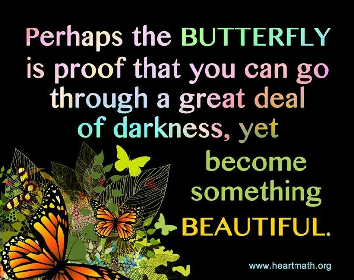 Perhaps the BUTTERFLY is proof that you can go through a
