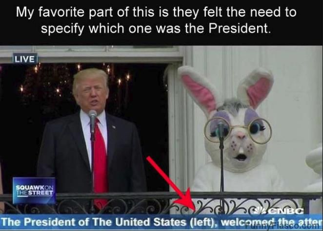 Which One Is Trump Funny Pictures Funny Funny Photos