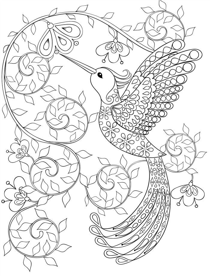 Printable Adult Coloring Book Hummingbirds