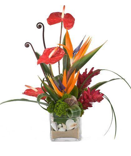Shop Silk Bird Of Paradise And Anthurium Tropical: Tropical Flower Arrangements
