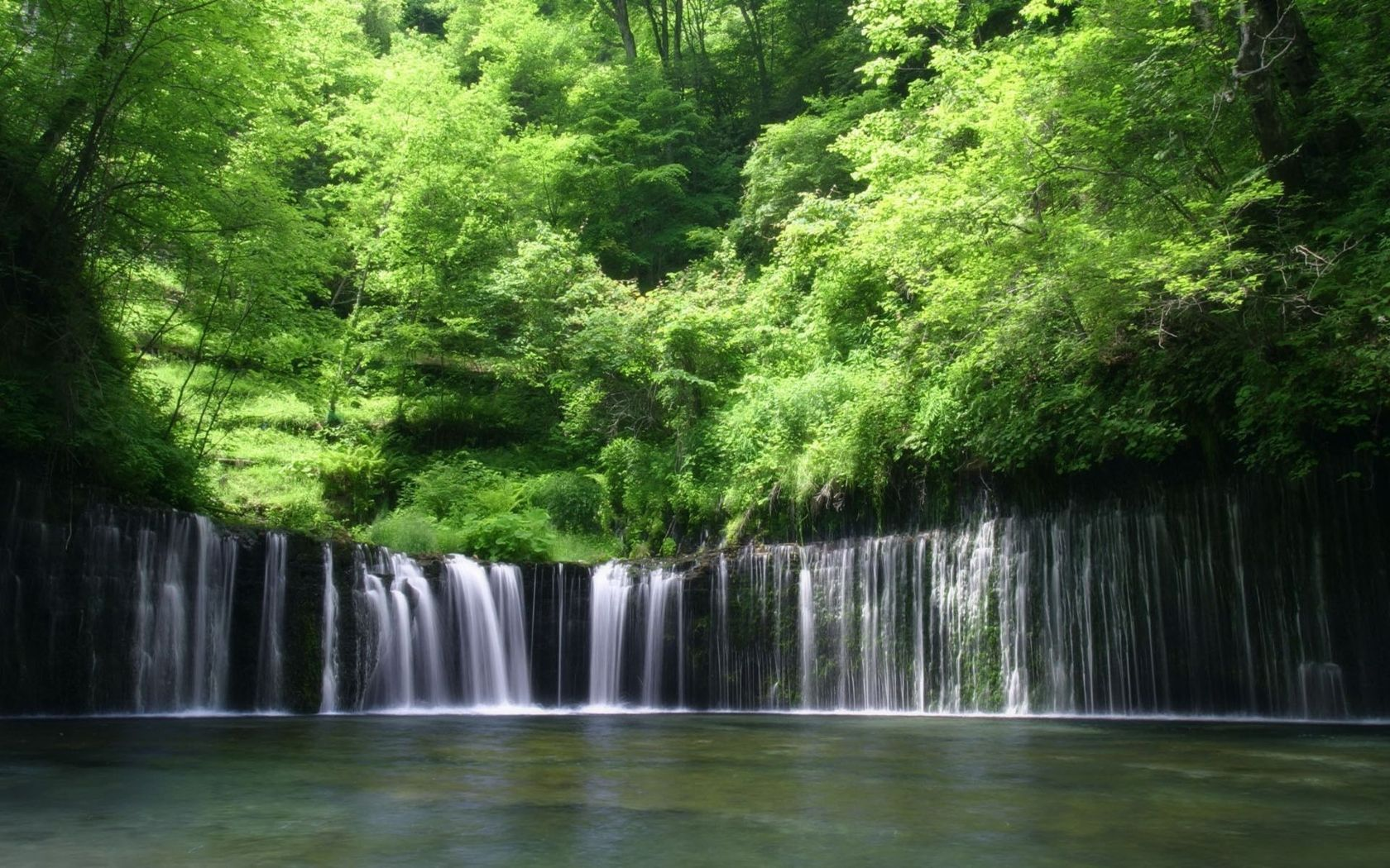 Rain Forest The Place We Want To Save Waterfall Wallpaper Forest Waterfall Waterfall