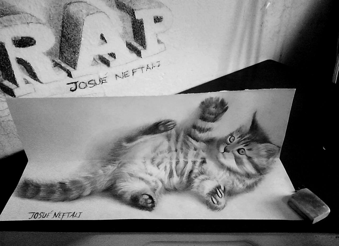 Hermoso Gatito Dibujos Dibujos 3d Dibujos 3d A Lapiz