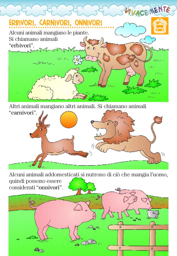 Disegni Da Colorare Di Animali Onnivori.Animali Erbivori Carnivori Onnivori
