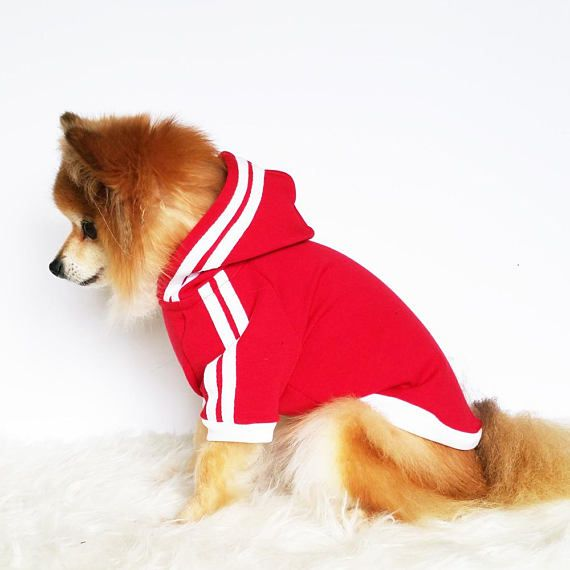 Red Dog Hoodie With Stripes Cute Clothes Dogs Dogclothes