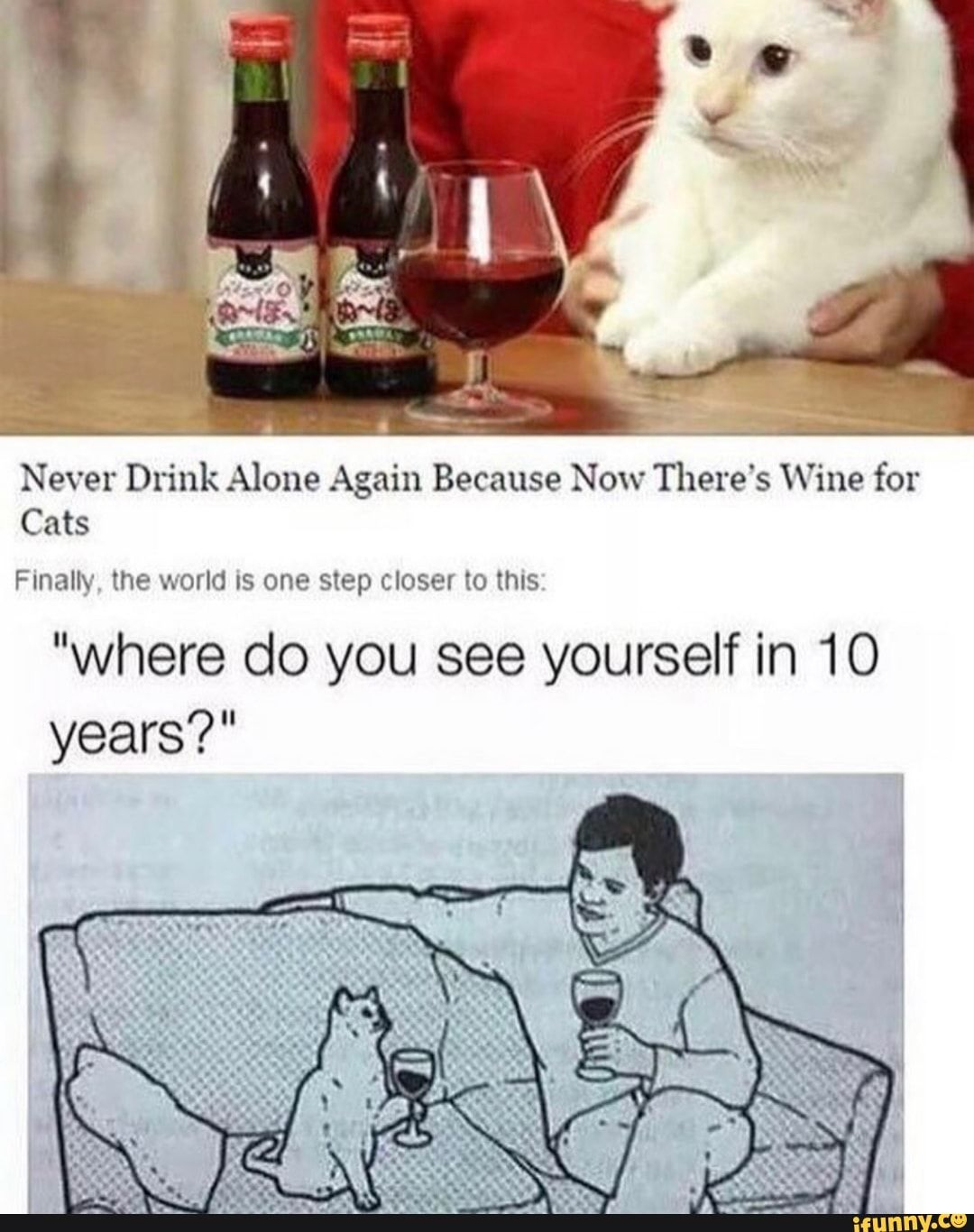 Drinking Alone Funny Meme