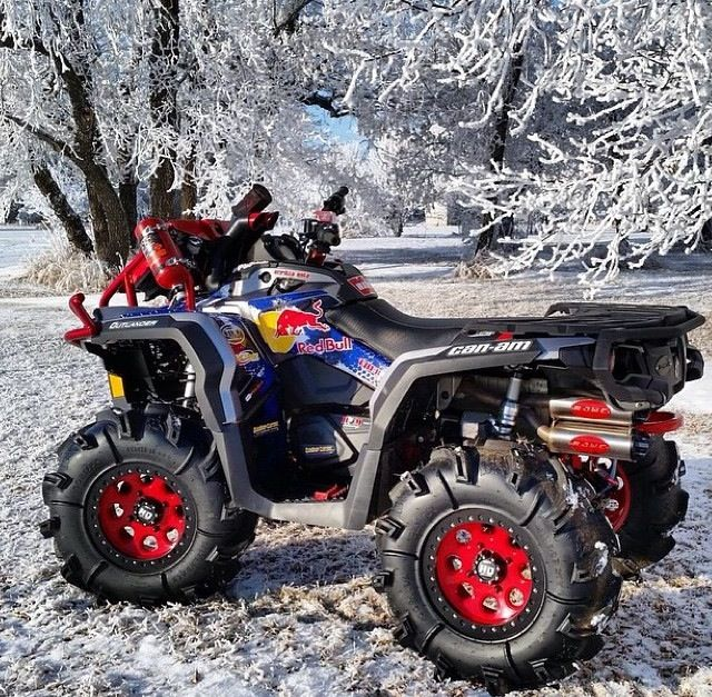 CAN AM PAITED  STICKERS LIKE RED BULL ATVs Pinterest Red - Red bull motorcycle custom stickers