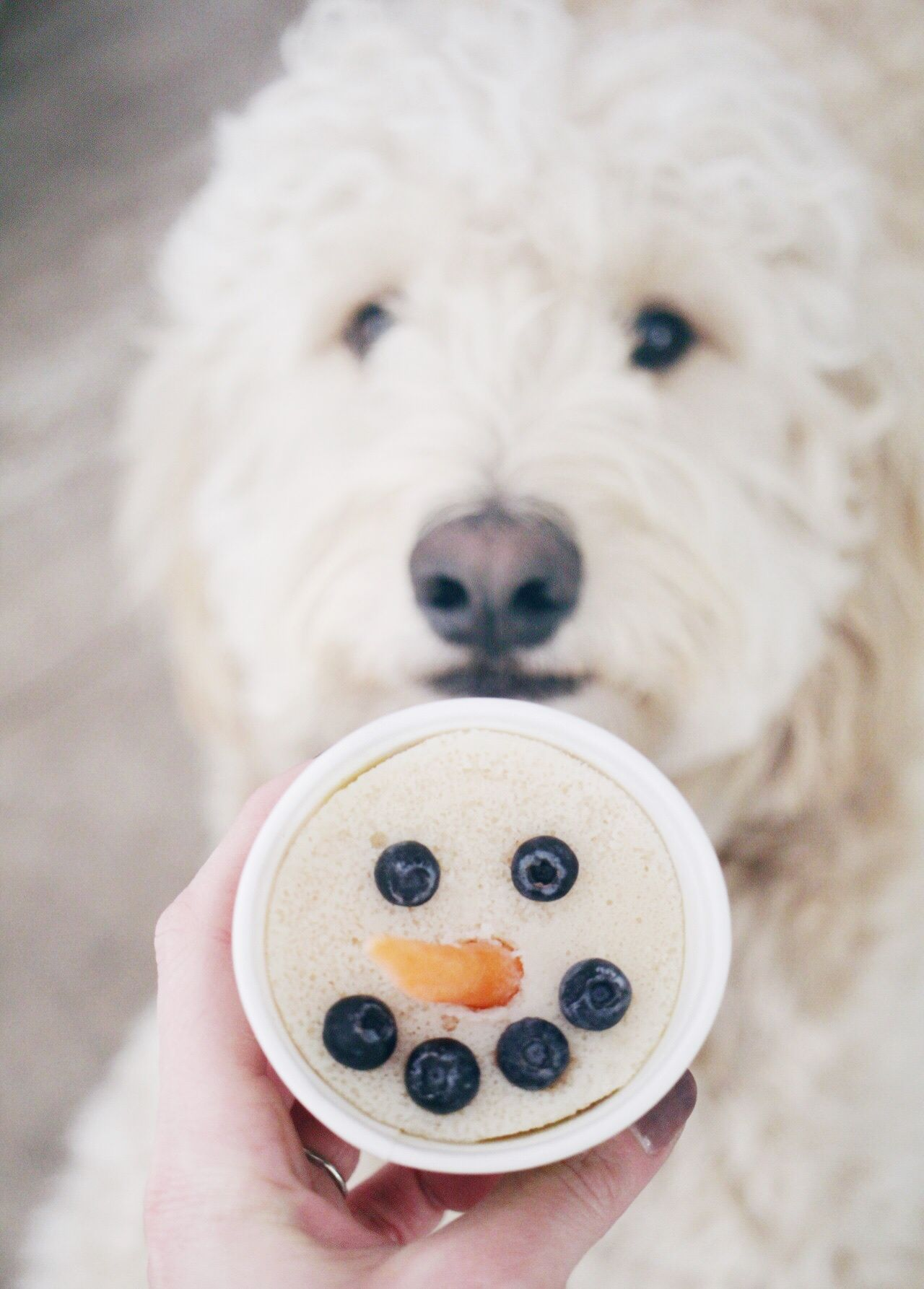 Tag us with your Yogurt Snowman via
