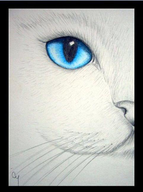 Pin Von Gabriele Heissbach Auf Katze Wasserfarben Kunst