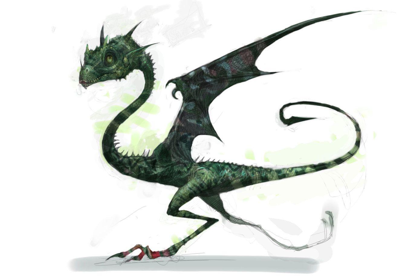 Pin Von Carrie Divall Auf Dragons Phantastische Tierwesen Harry Potter Phantastische Tierwesen Tiere