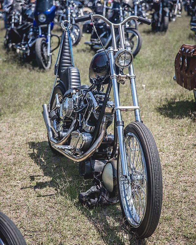 Skinny and aggressive, just the way we like 'em. Found in the general parking at Born Free 8 @bornfreeshow lowbrowcustoms.com/bornfree8 for more photos. #bf8 #bornfree8 #choppers #shovel #slabside #skinny #mean #lean #classic #harley #lanesplitter