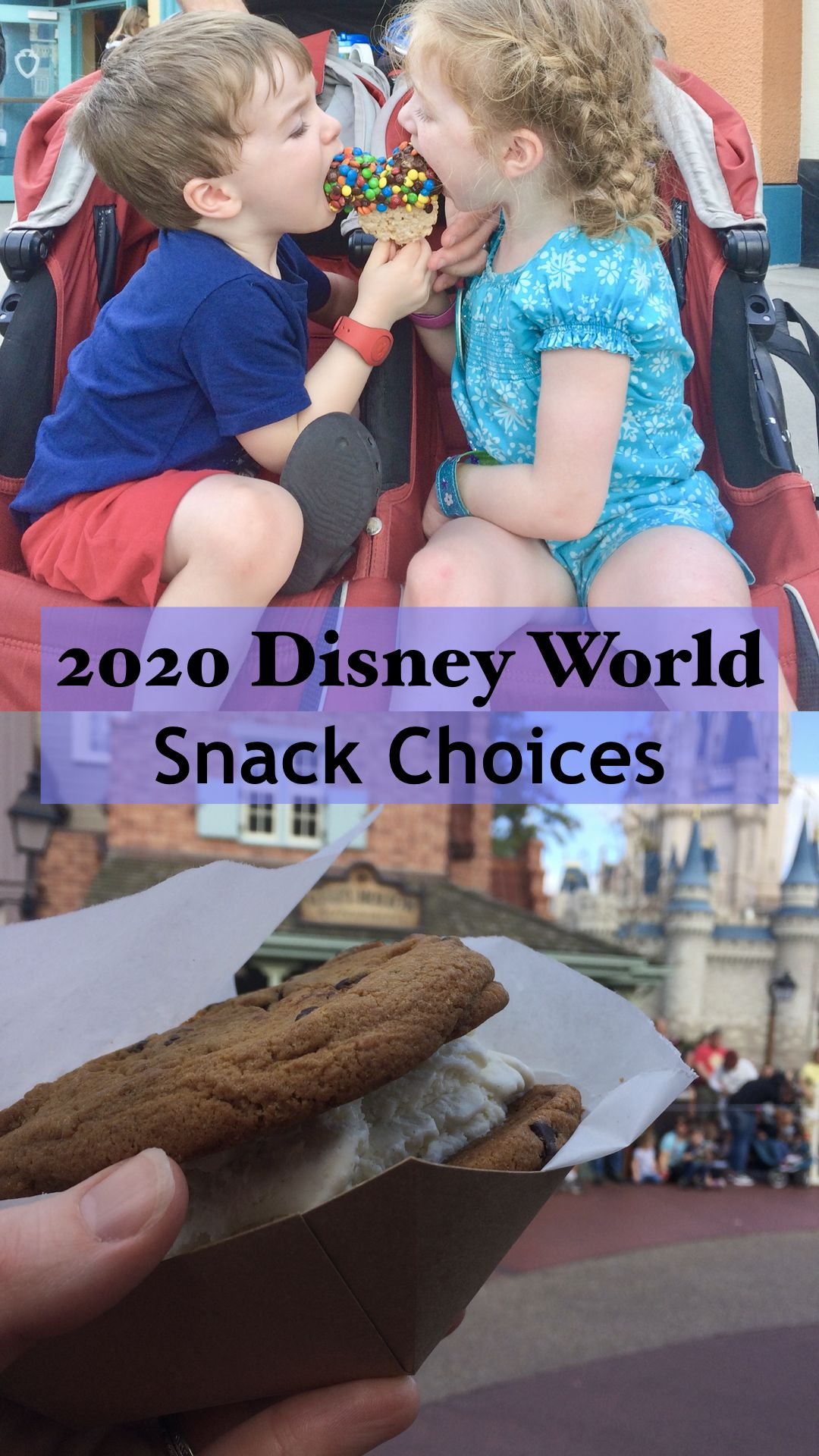 My choices for 2020 Disney World snacks. Snacks at the
