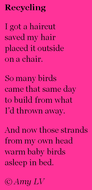 Recycle with Birds | Poem lesson, Bird poems, Teaching