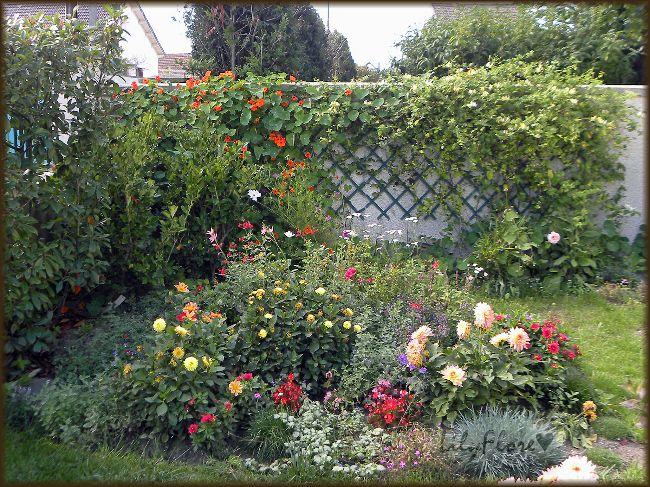 466 petit coin sauvage dans mon jardin au jardin pinterest jardins amenagement jardin. Black Bedroom Furniture Sets. Home Design Ideas