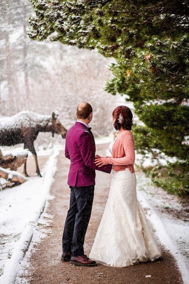 4Legged Wedding crasher in Colorado! Colorado wedding