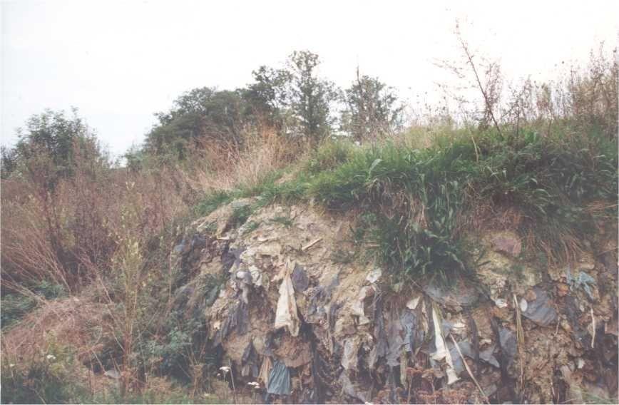 Vue 1993 de la Décharge d'Anton à Andenne #spaque #rehabilitation #remediation #landfills #decharge