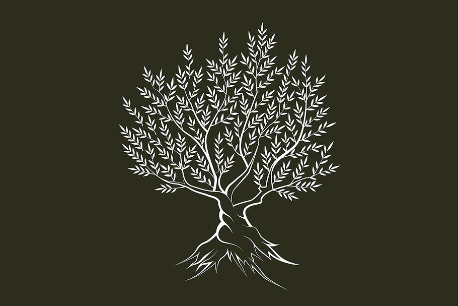 Vector Olive Tree Silhouette Cizim Silhouette