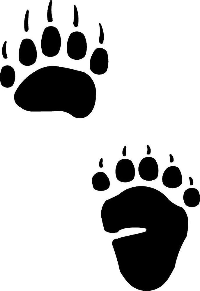 Bear tracks and grass tattoo native american bear paw for Bear footprints template